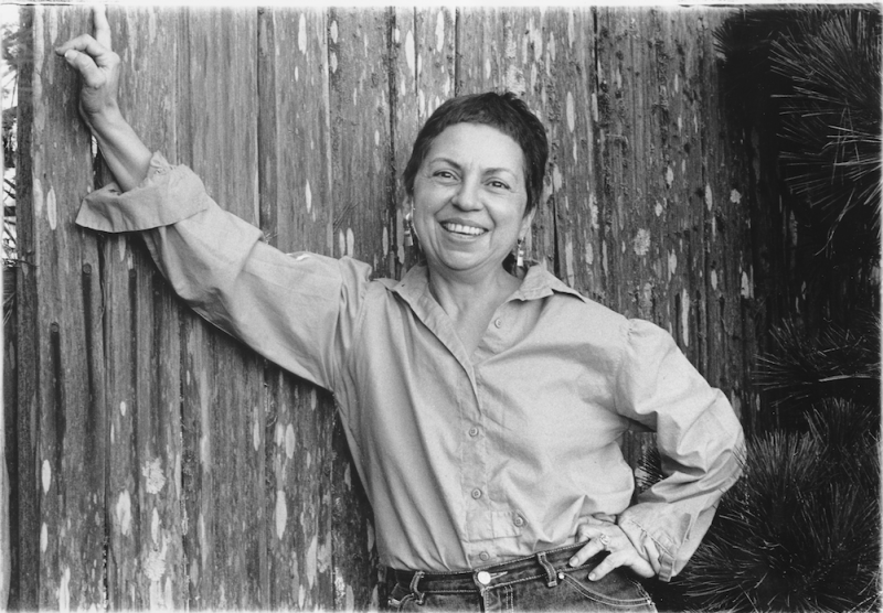 Gloria Anzaldua, Author of Borderlands/La Frontera Book