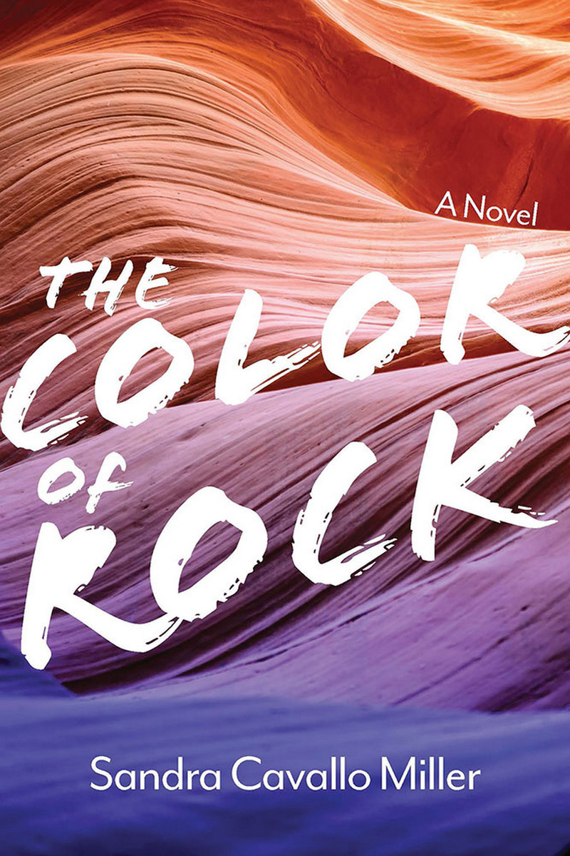 The Color of Rock: A Novel