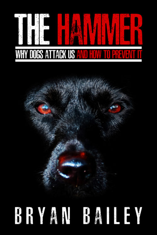 The Hammer - Why Dogs Attack Us and How to Prevent It