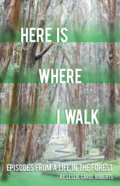 Here is Where I Walk: Episodes From a Life in the Forest