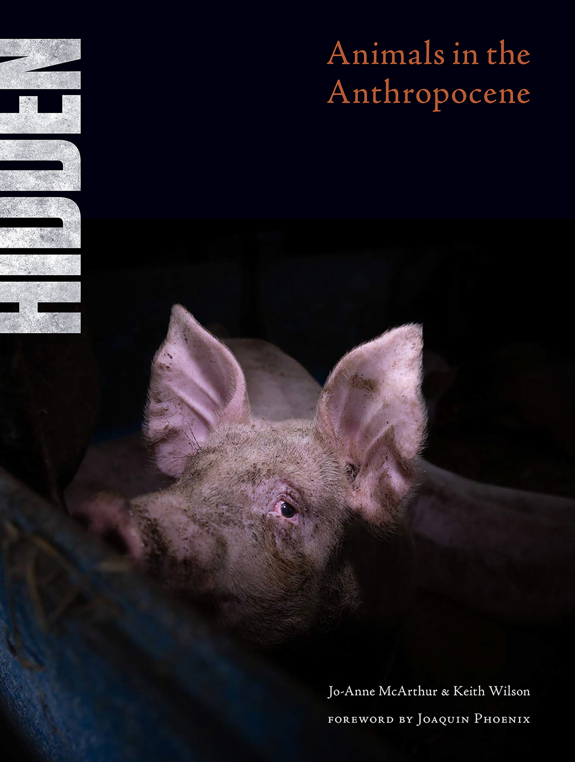 Hidden: Animals in the Anthropocene