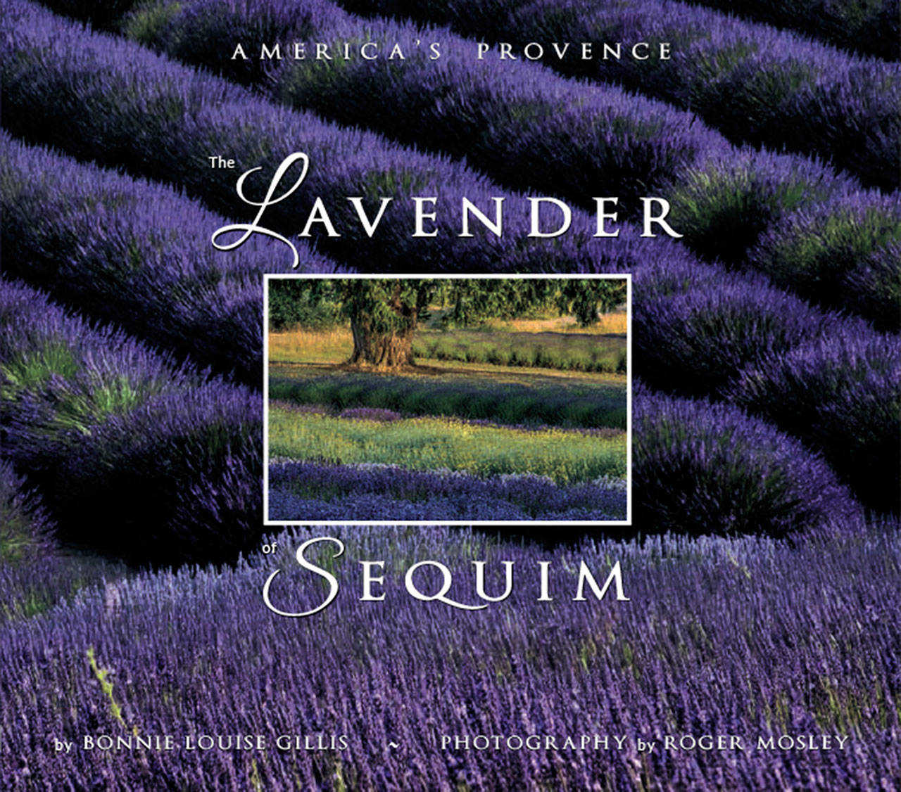 The Lavender of Sequim: America's Provence