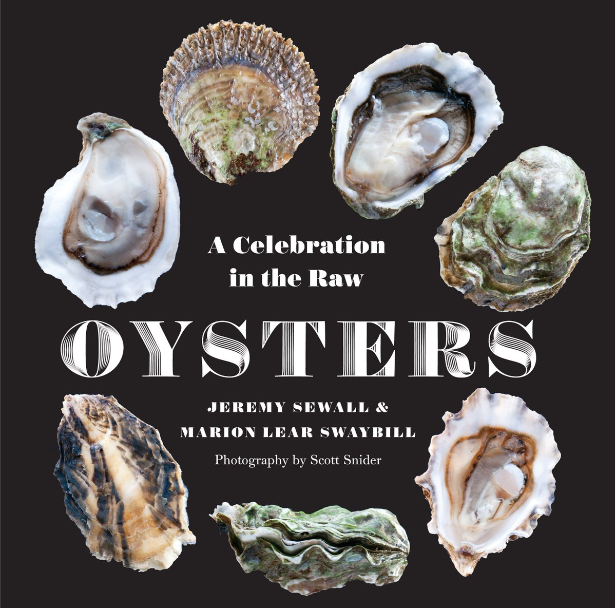 Oysters : A Celebration in the Raw