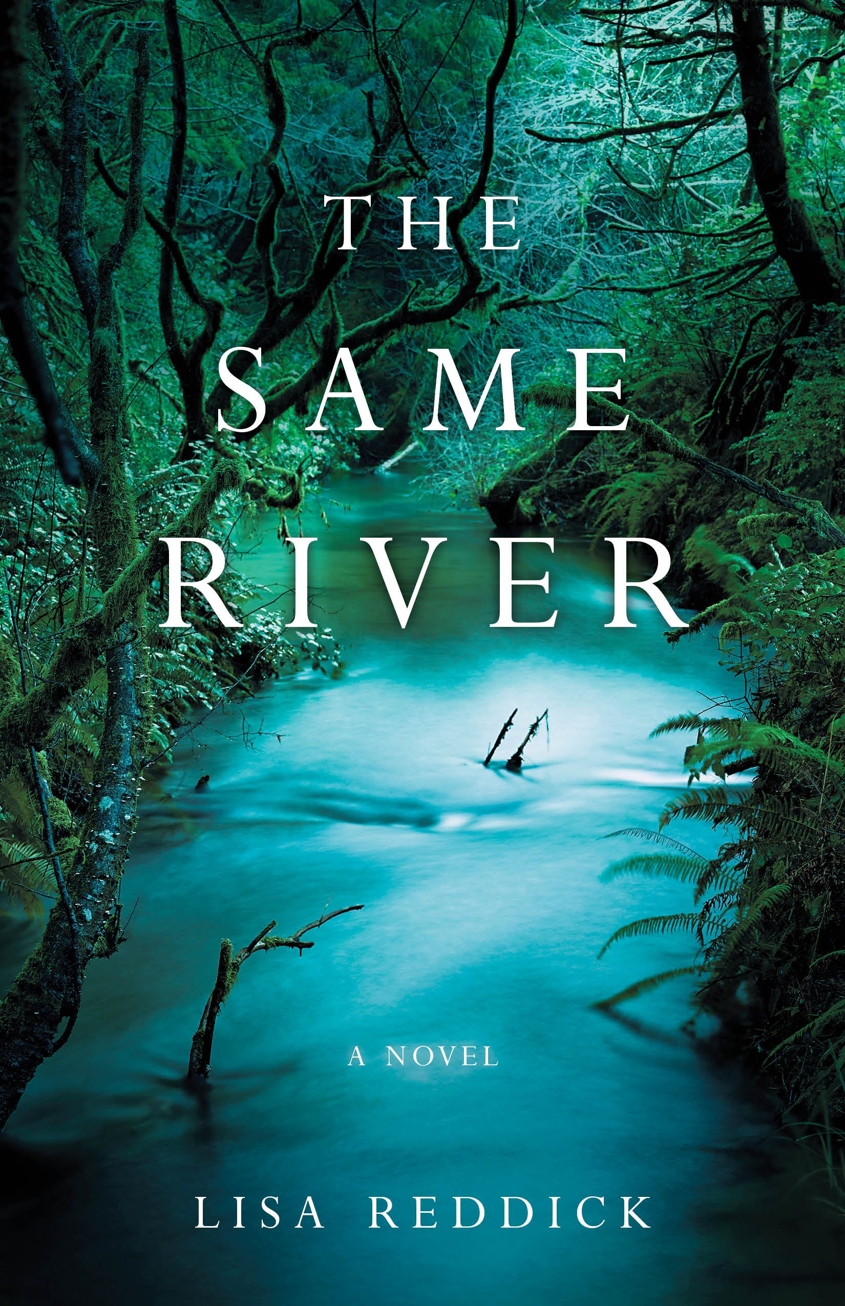 The Same River: A Novel