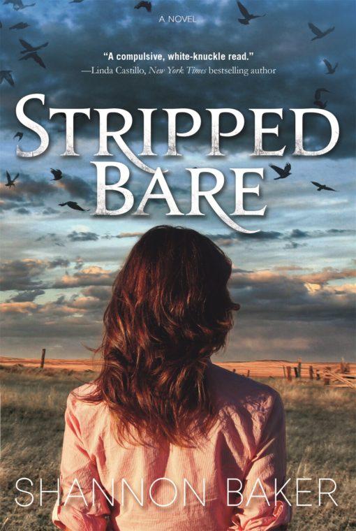 Stripped Bare: A Novel